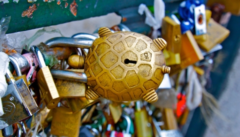LoveLocks-Paris-Turtle
